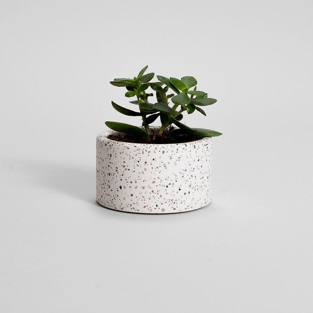 Zdjęcie produktu PARVI BROWN ROCK PLANT - doniczka