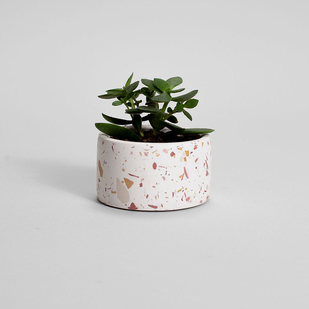 Zdjęcie produktu PARVI BURGUNDY TERRAZZO PLANT - doniczka