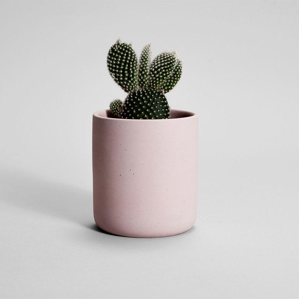 Zdjęcie produktu MEDIO PINK CONCRETE PLANT - doniczka