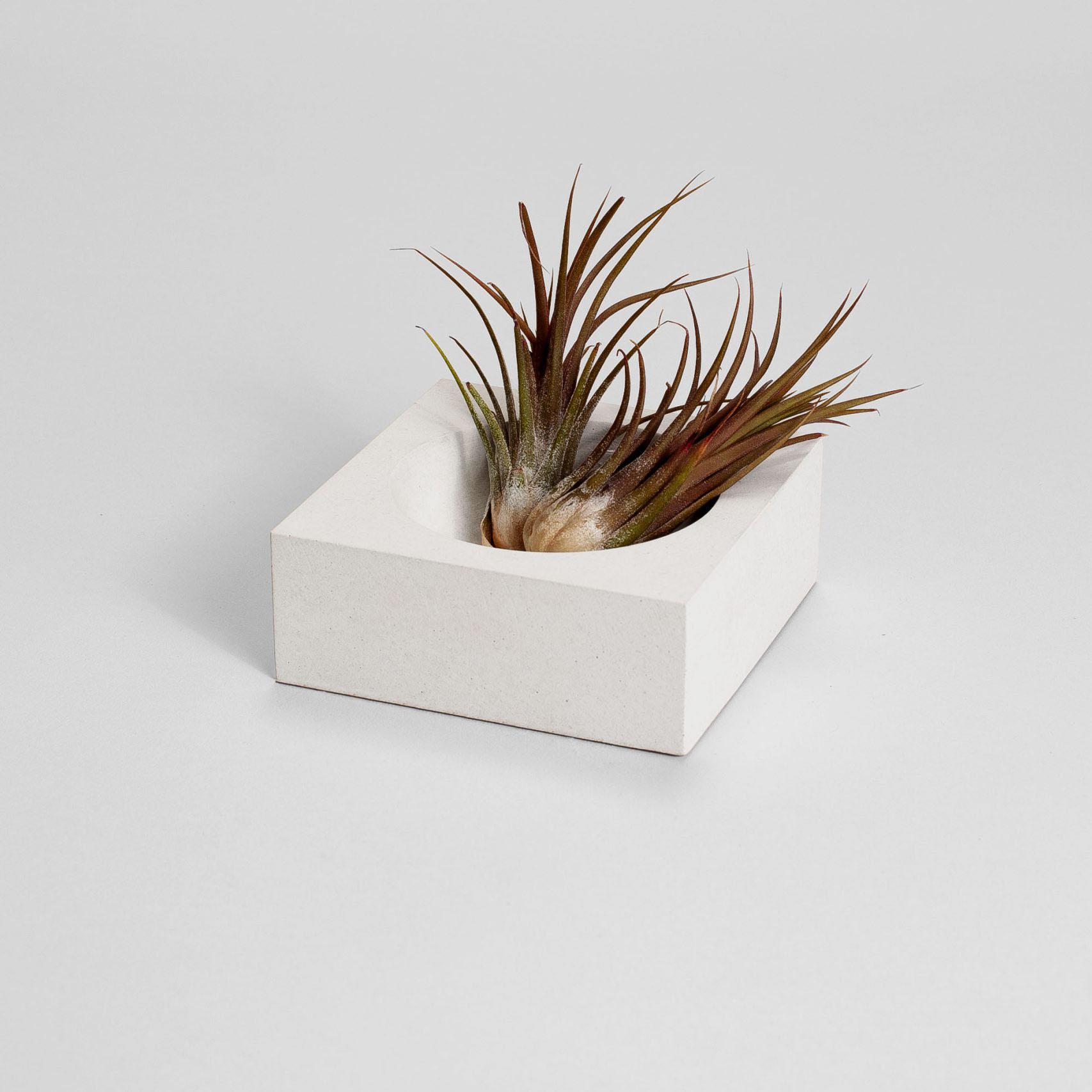 Zdjęcie produktu WHITE CONCRETE GEOMETRIC BOWL