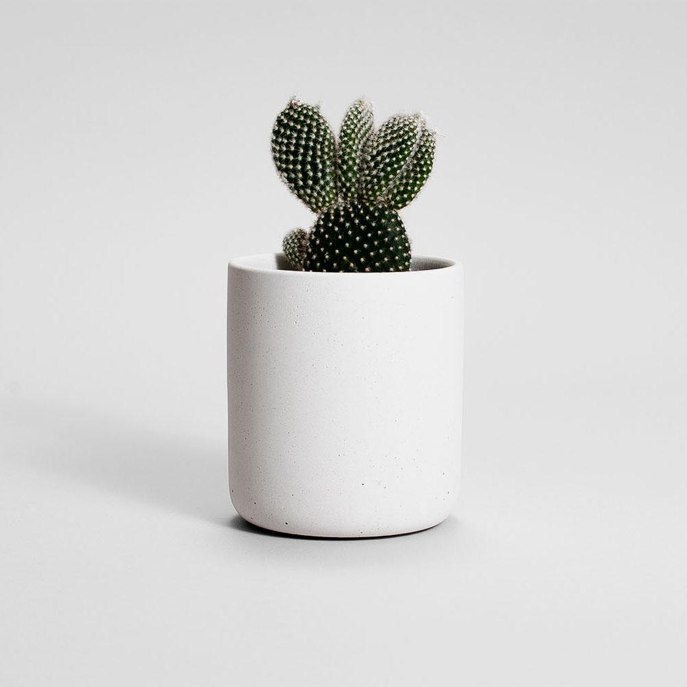 Zdjęcie produktu MEDIO WHITE CONCRETE PLANT - doniczka