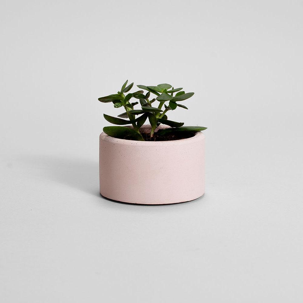 Zdjęcie produktu PARVI PINK CONCRETE PLANT - doniczka