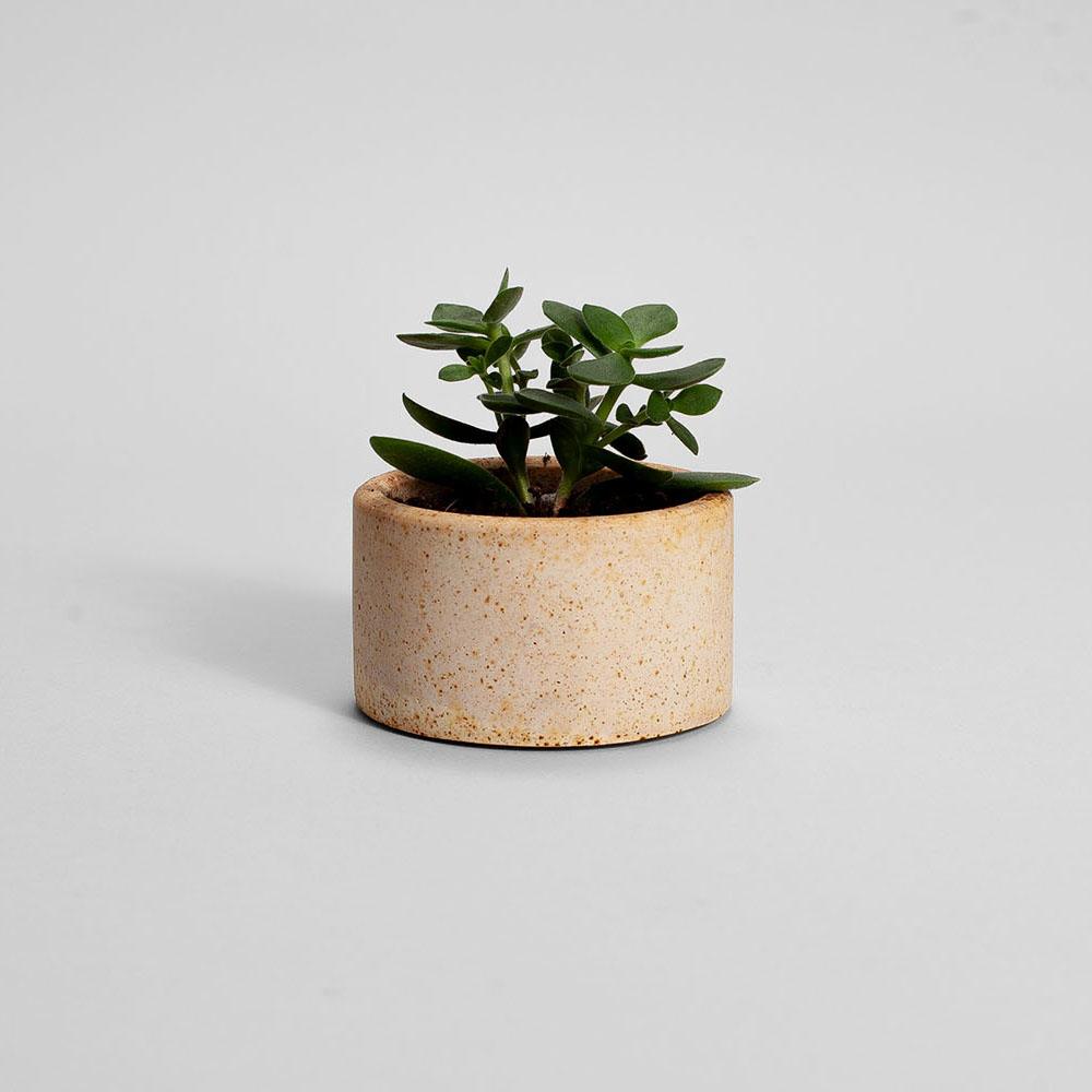 Zdjęcie produktu PARVI RUSTED BEIGE PLANT - doniczka