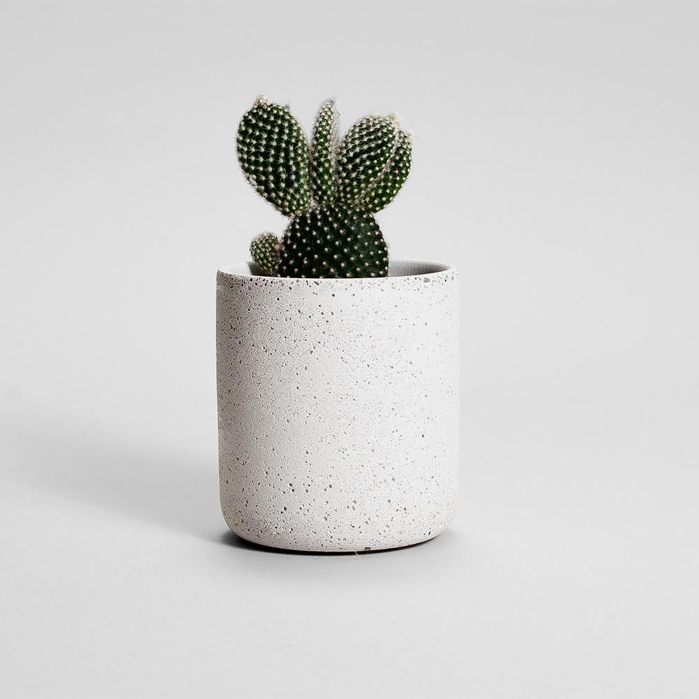 Zdjęcie produktu MEDIO STRACIATELLA CONCRETE PLANT - doniczka
