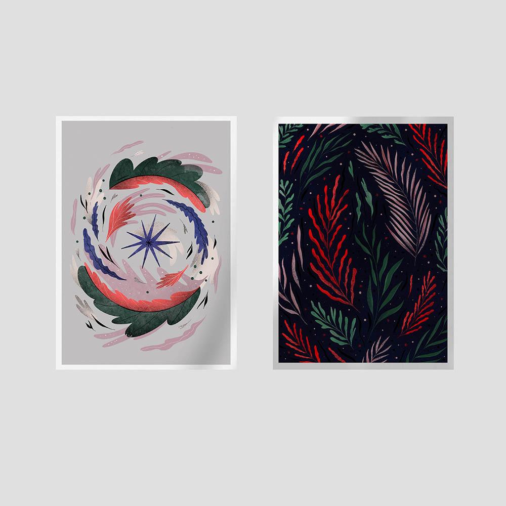Zdjęcie produktu Zestaw ilustracji Cosmos i Floralcosmos