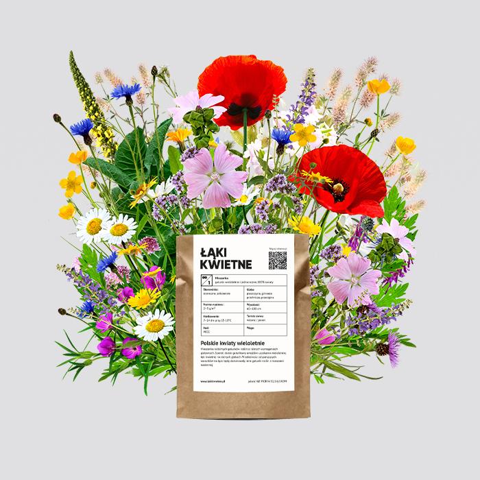 Zdjęcie produktu Łąka kwietna polskie kwiaty wieloletnie 100 g  (40m²)