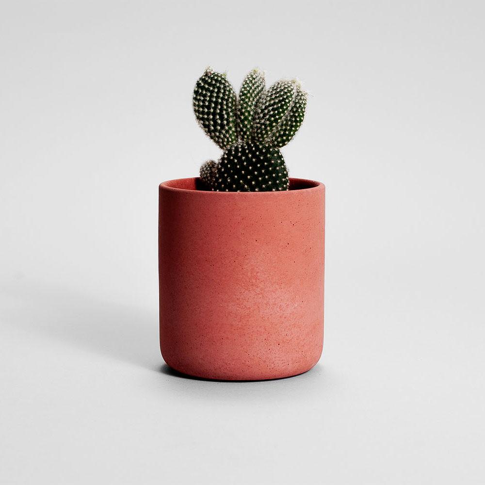 Zdjęcie produktu MEDIO TERRACOTTA CONCRETE PLANT - doniczka