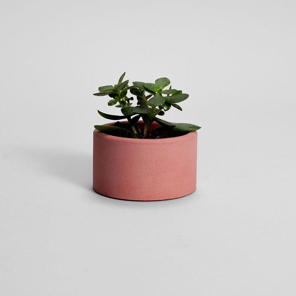Zdjęcie produktu PARVI TERRACOTTA CONCRETE PLANT - doniczka